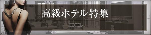 高級デリヘルが呼べるホテル・ラブホテル